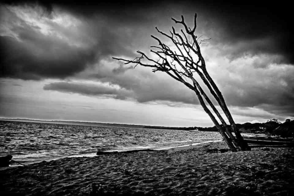 Stormbringer-stories