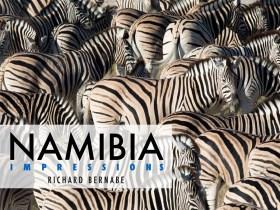 Free e-book: Namibia Impressions