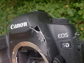A Bear is Eating My Camera