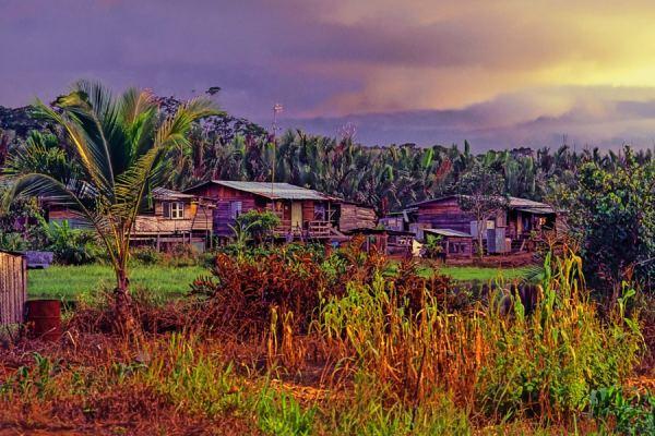 daily - village in brunei