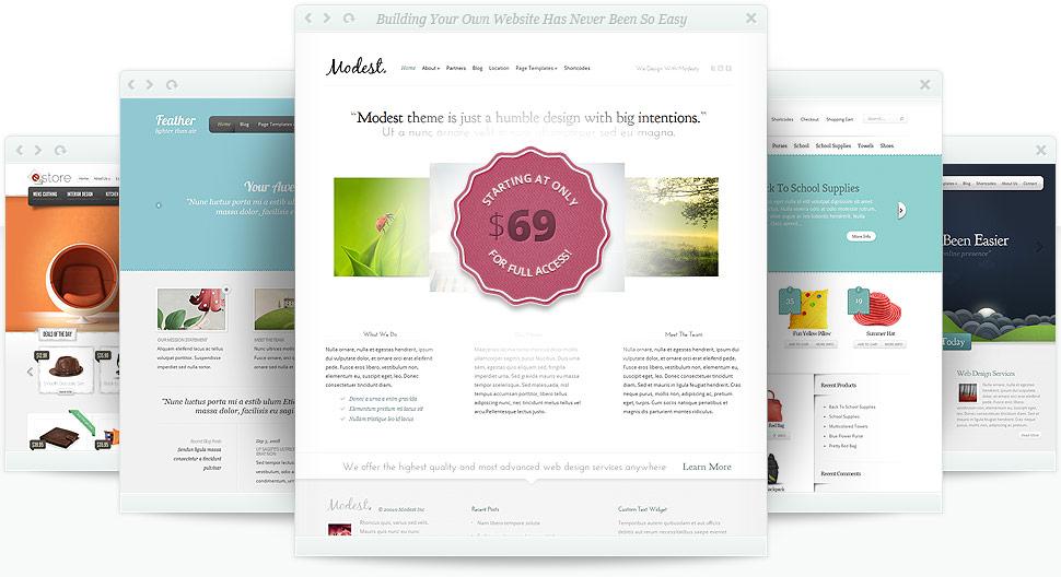 Mooi thema voor WordPress: Divi 2