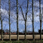 cropped-Day-081-Stubbington-a1.jpg