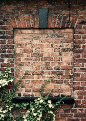 Bricked-Window-3a-e-©