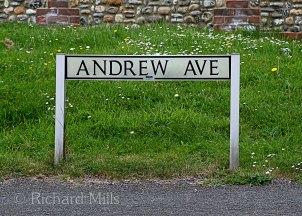 Andrew-Avenue