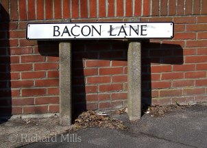 Bacon-Lane