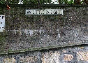 Little-in-Sight