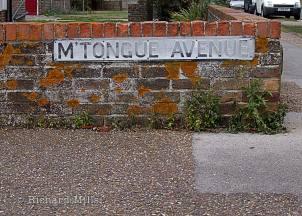 M'Tongue-Avenue---Emsworth---Bosham---Oct-'09-09-e-©