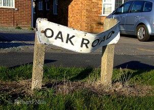 Oak-Road