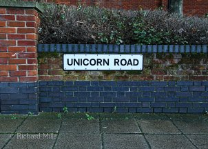 Unicorn-Road
