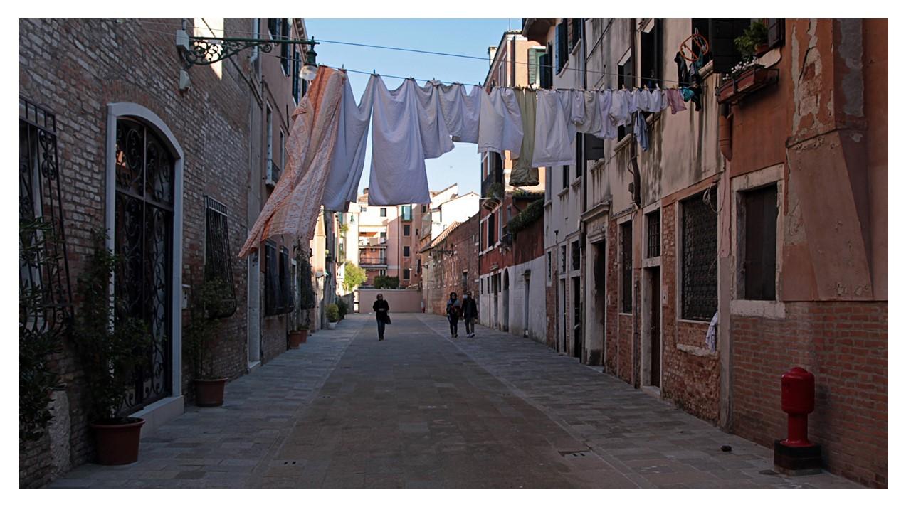Venice 2014