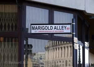 Marigold-Alley---London---Mar-'09-32-e-©