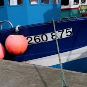 Boat Number - CN 260875