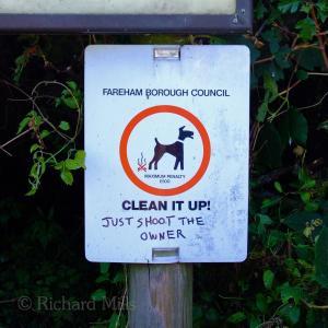 Portsdown Hill 25 esq © resize