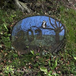 202 Burridge - April 2012 110 esq sm ©