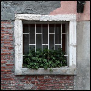 5 Venice 1486 esq © resize