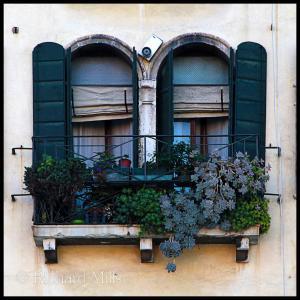 6 Venice 1875 e Square © resize