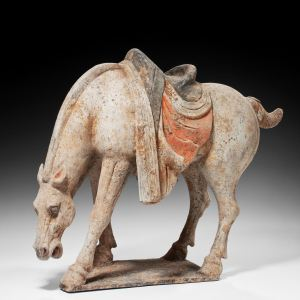 RARE CHINESE TANG DYNASTY FIGURE OF A HORSE GRAZING