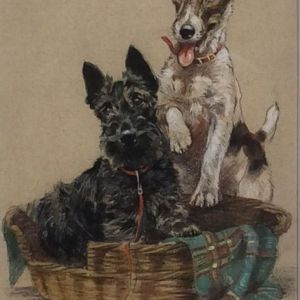 MABEL GEAR WATERCOLOUR DOGS SCOTTIE TERRIER