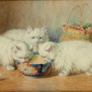 MINNIE ROSA BEBB WATERCOLOUR CATS KITTENS