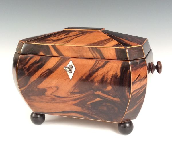 ANTIQUE SARCOPAGUS COROMANDEL TEA CADDY