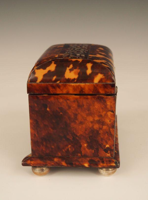 tea-caddy-tortoiseshell-antique-single-P7300186_5816