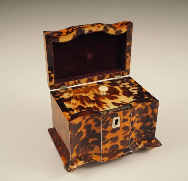 tea-caddy-tortoiseshell-antique-single-P7300186_5816