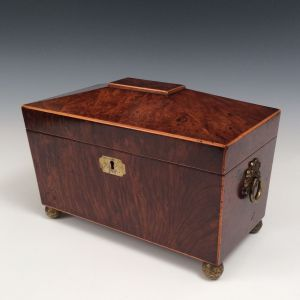 EARLY 19th CENTURY YEW WOOD TEA CADDY