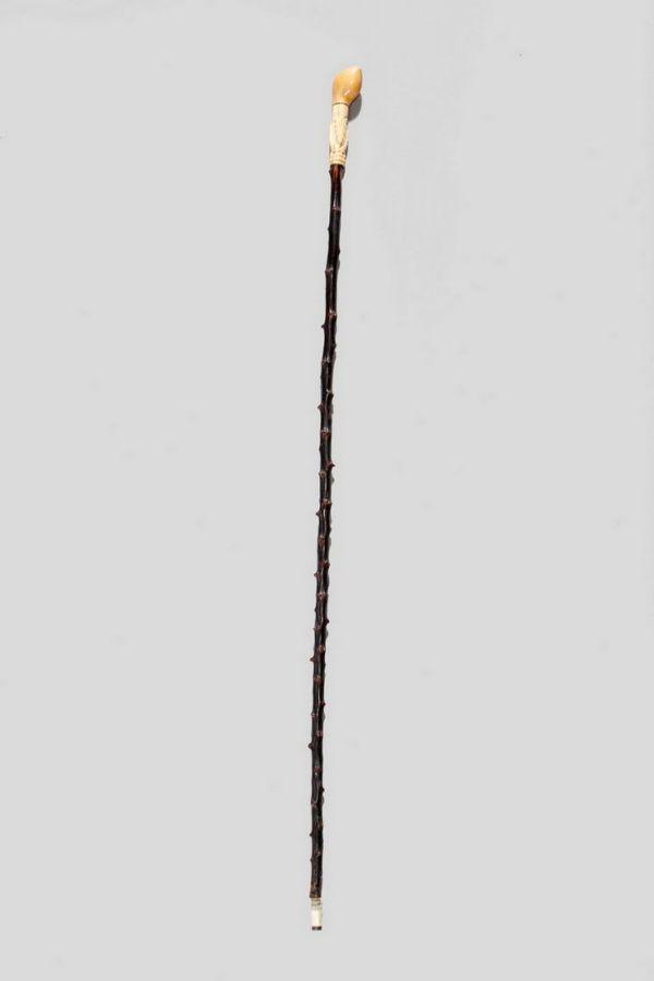 walking-cane-thorn-shaft-carved-ivory-handle-antique-5538_1_5538