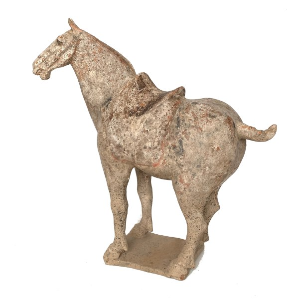 antique-tang-dynasty-chinese-pottery-horse-standing-IMG_3888