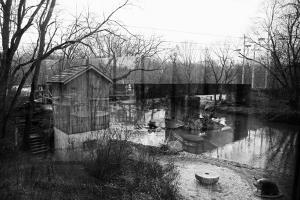 Brandywine River reflections