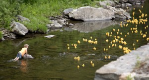 The Duck Race - r