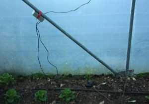 Sensors deployed in a polytunnel