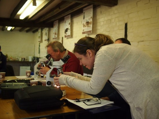 SoilBioLab team member Jen was extremely helpful in explaining how to use a microscope & identify soil micro-organisms.