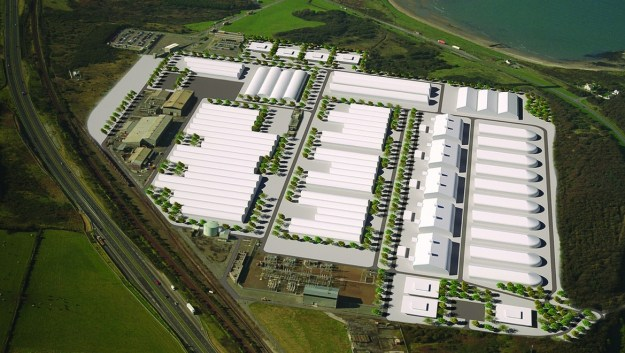 Orthios Anglesey Plant