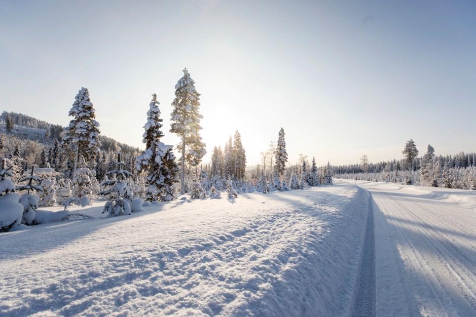 RW_0220_Canon_Lapland_0002.jpg?fit=2000%2C1333