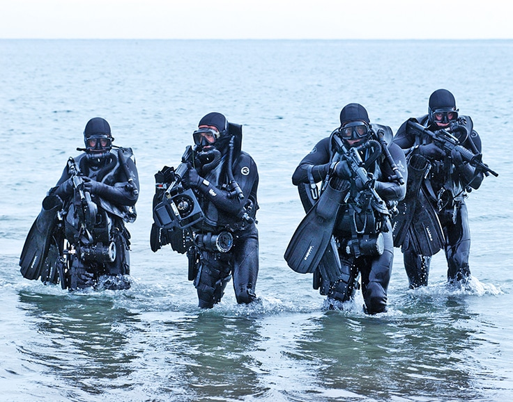 Navy SEALs, United States