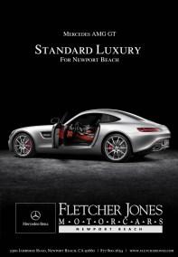 standard luxury amg gt