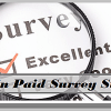 Top 10 Online Paid Survey Sites to make money in 2013