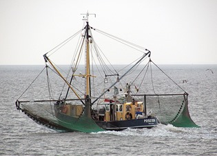 Commercial fishermen scariest job