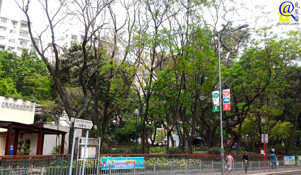 觀月‧樺峯   Park Metropolitan - 信置與市建局的香港觀塘住宅項目   覓至房