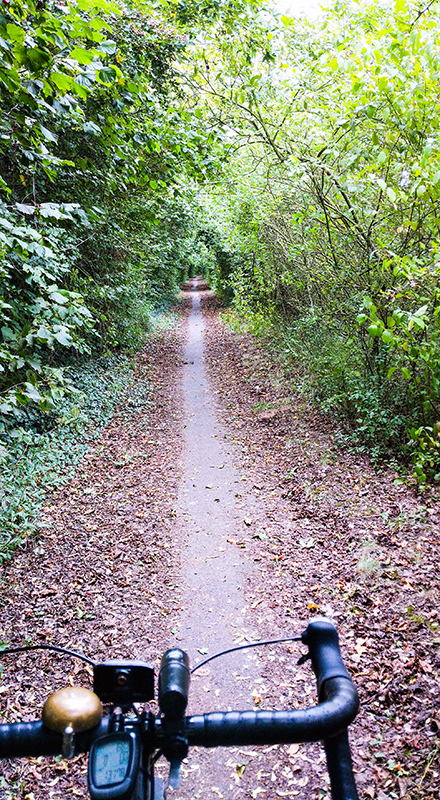 Hidden Cycle Path