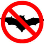 about us - no bats image