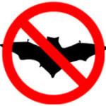 about us - no bats image
