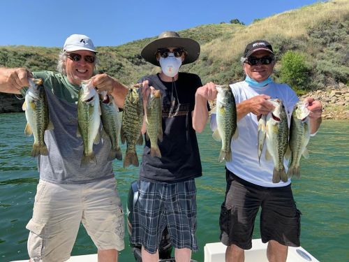 Southern California Bass Fishing Guide's Report 05/11/2020