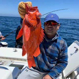 Southern California Fishing Guide's Report 08/02/2020