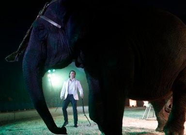 Flórián elefánt száma