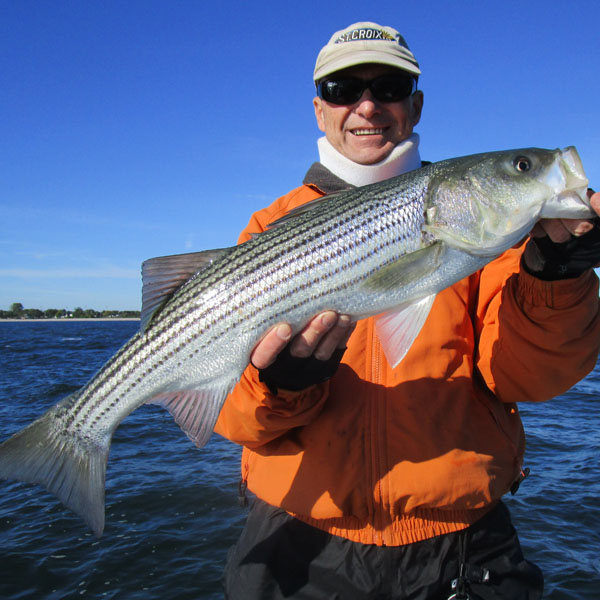 Took a ride down the housy today richz 39 s bass blog for Fishing reports long island