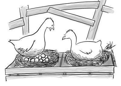 Chicken Principles