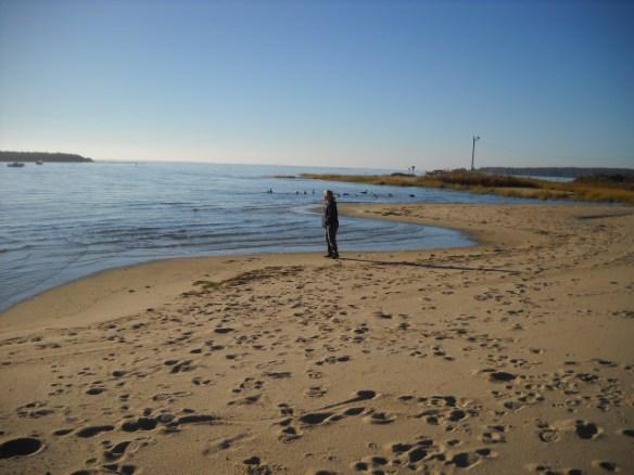 A sad Swifts Neck Beach.