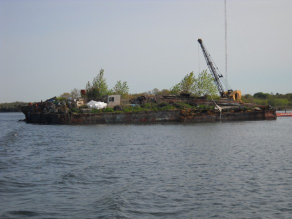 This working barge in New Bedford Harbor has full grown trees on it.